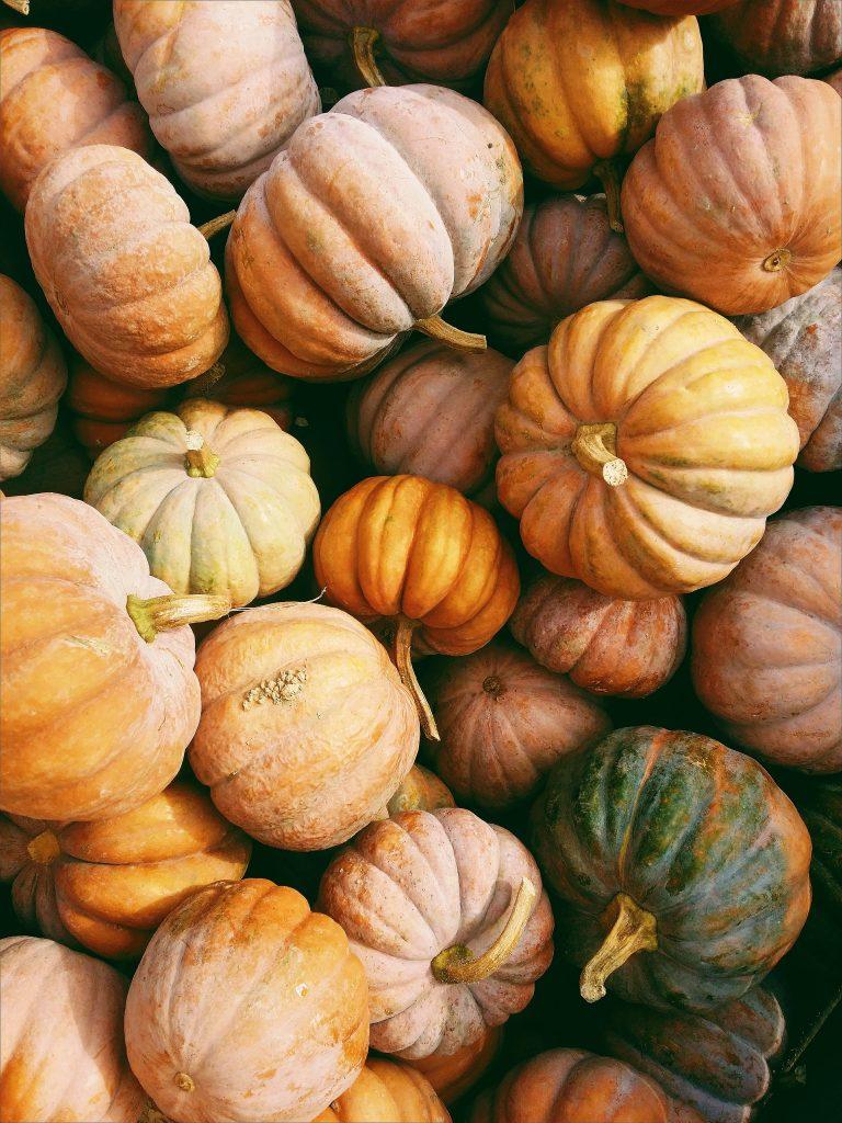 pumpkins raleigh nc